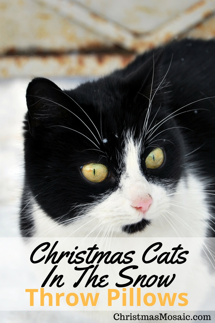 Cats First Christmas Ornaments